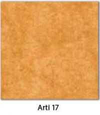 Arti-17